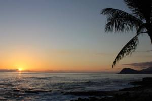 Hawaii Luau Beach